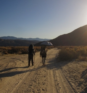 Wandering through Collins Valley on the road to Sheep Canyon.