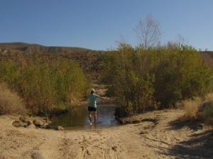 """""""Third Crossing"""" in Coyote Canyon--for 4-wheel drive vehicles or barefoot hikers only."""