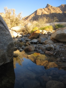 I love to spend time reflecting near the streamside rocks, who do their own reflecting along with me.