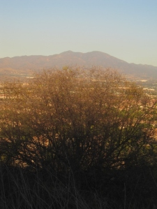 Old Saddleback, as viewed from the Quail Hill trail
