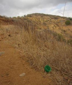 "What can interrupt my pleasant galloping down the dusty trails of Barham Ridge? Ridiculous discarded water bottle caps. It's difficult for me to imagine how someone can just go, ""La la la I'm going to drink out of my BPA-laced bottle and just chuck the cap here along the trail because it's too heavy to carry back to the trailhead trash can."""