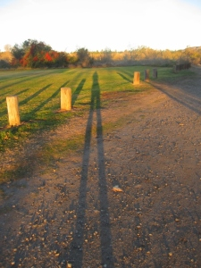 Early morning shadow fun.