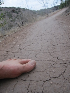 The less-traveled Deer Trail: cracked clay, smooth running.