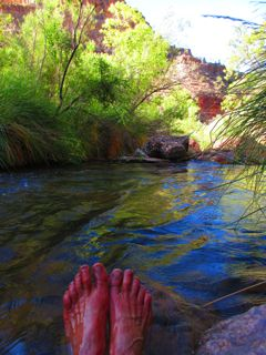 Soaking my feet in the chilly waters of Bright Angel Creek was fabulously refreshing, but I couldn't linger . . . it was only 8 am, but the temperature was hot and getting hotter.