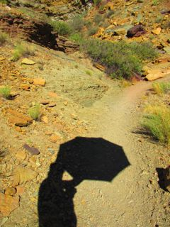 There is nothing like hiking in the shadow of an umbrella to make the desert heat bearable. Mine is from GoLite: http://www.golite.com/Chrome-Dome-Trekking-Umbrella-P928.aspx