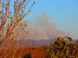 "Yesterday's view of the fire chewing through chaparral near ""my"" Orange County wildlands . . . scary . . ."