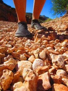 Sockwa X-8's on the Havasu Canyon trail