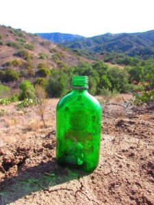 "Someone had set this bottle next to the trail; it reminded me of Wallace Stevens' poem ""Anecdote of the Jar."""