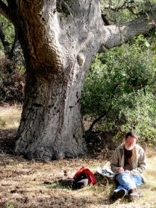 Chuck under oak