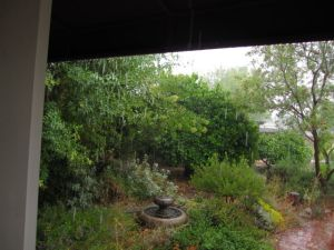 We had some odd-but-fabulous weather in May . . . such as this crazy downpour one morning . . .