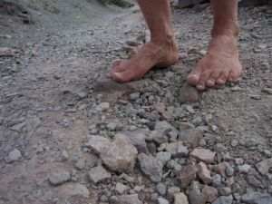 barefoot on the North Kaibab Trail