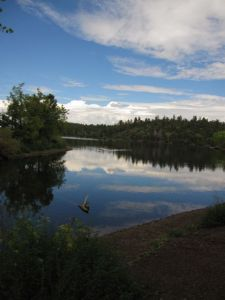 Lynx Lake reflection