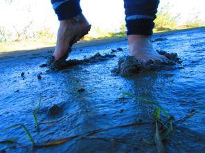 So much lovely mud!