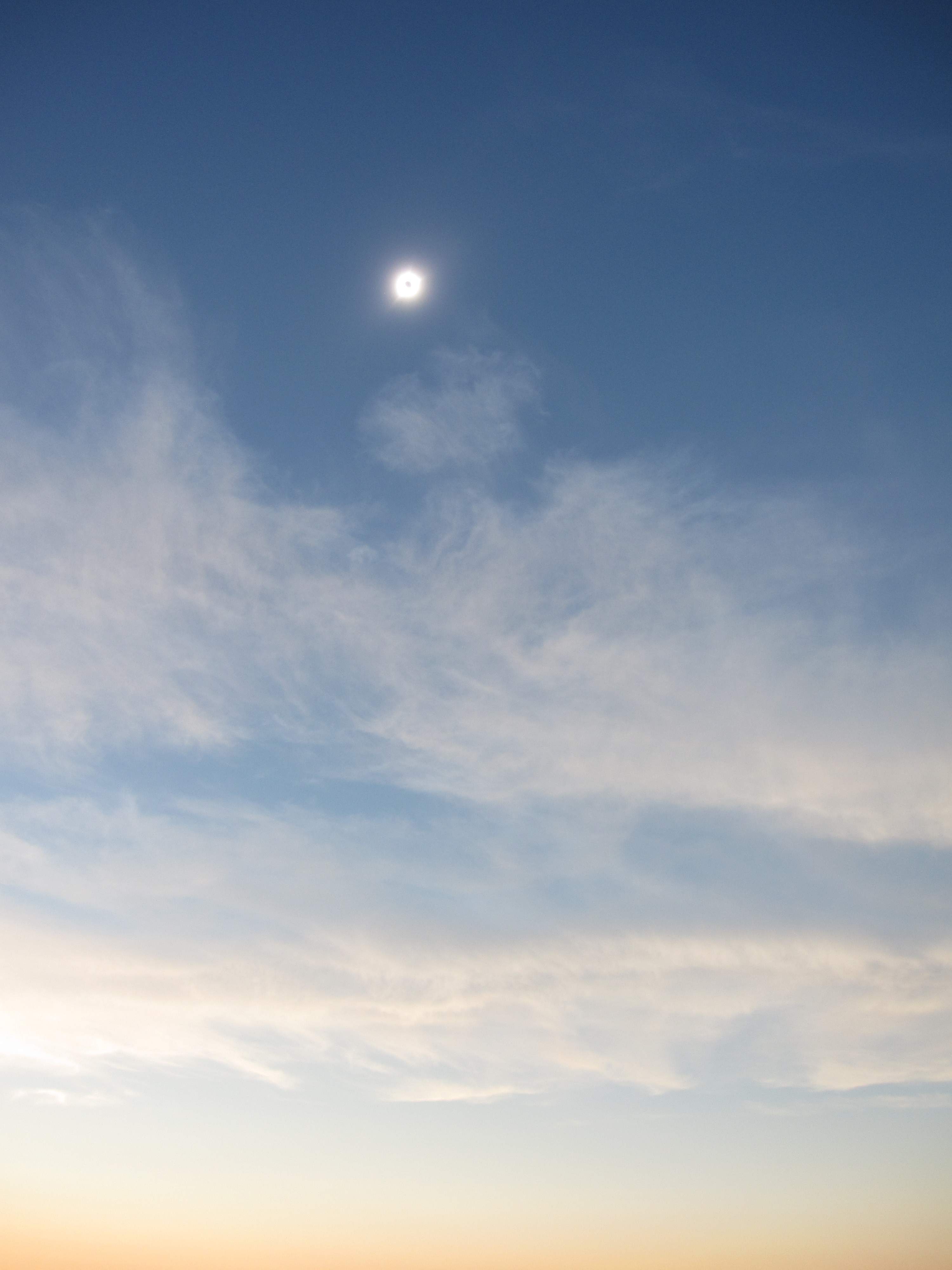 "the metaphors in total eclipse an essay by annie dillard Annie dillard and the writing life54  ""total eclipse"" by annie dillard180  if the assignment is an essay on dogs, you can,."