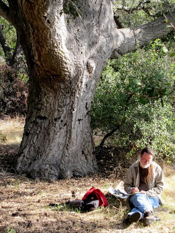 20.0Chuck under oak.jpg