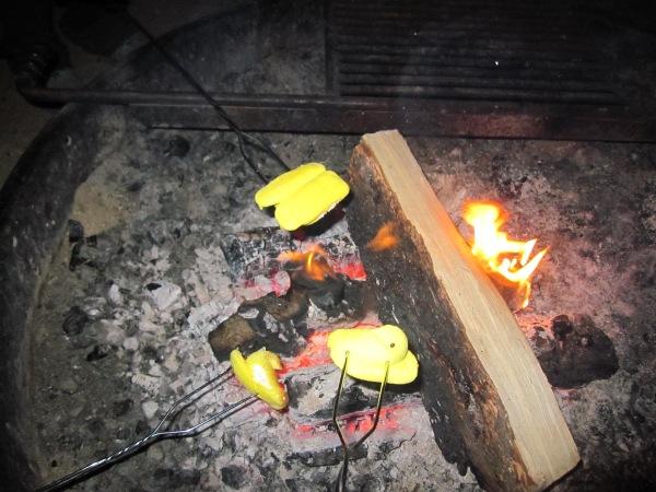 Campfire Peeps
