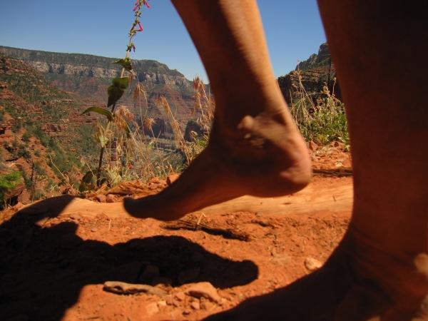 grand canyon 6 22 11 167