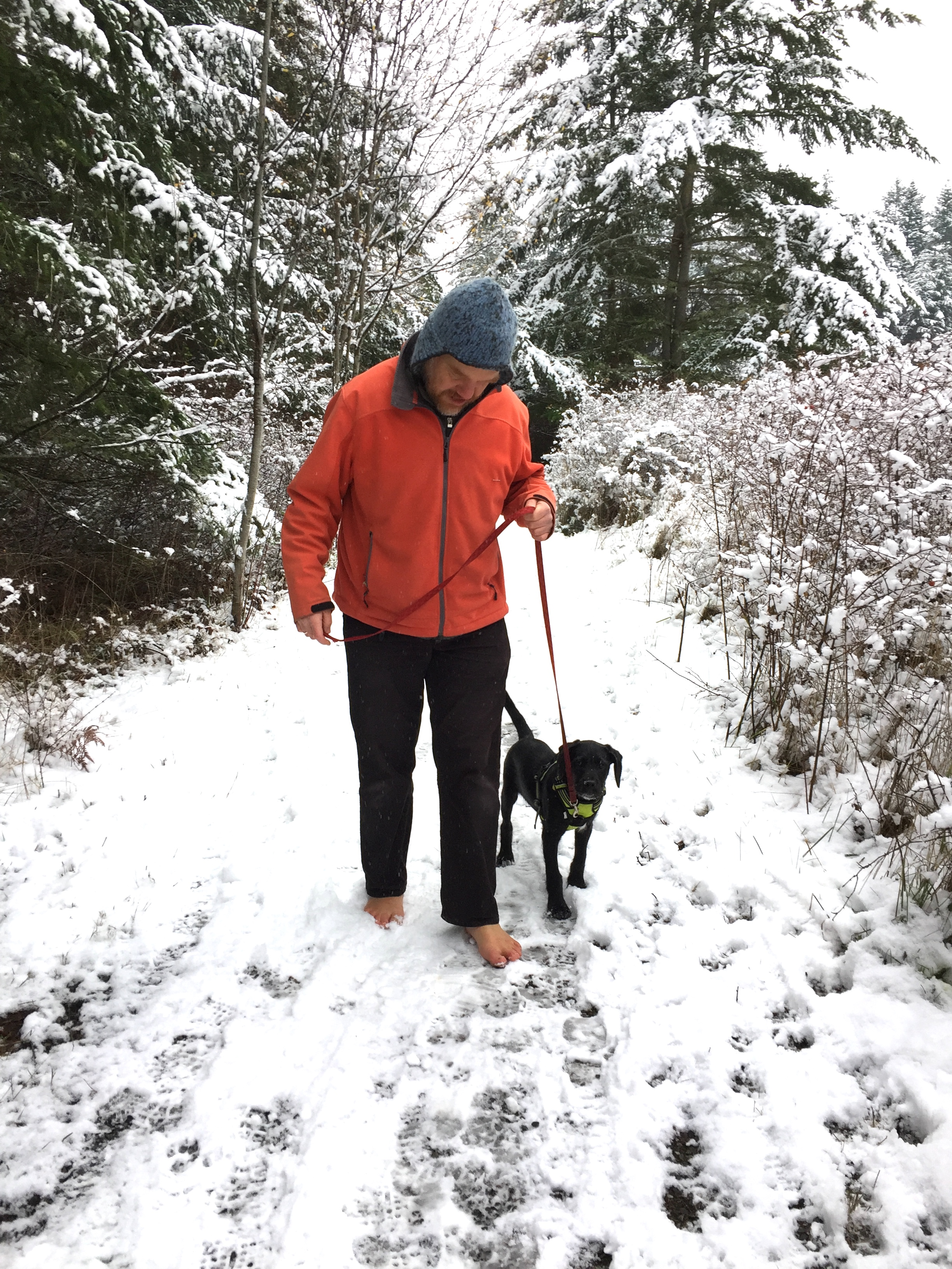 barefoot dogwalking in snow