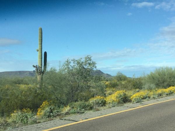AZ highways